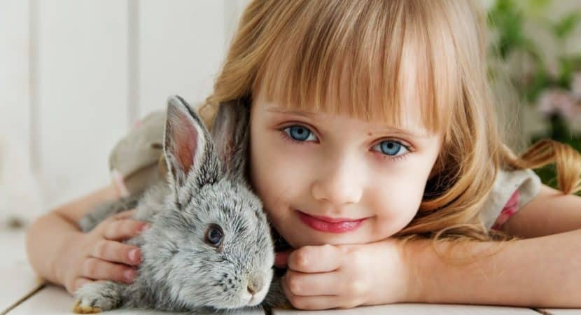 little girl with a pet rabbit