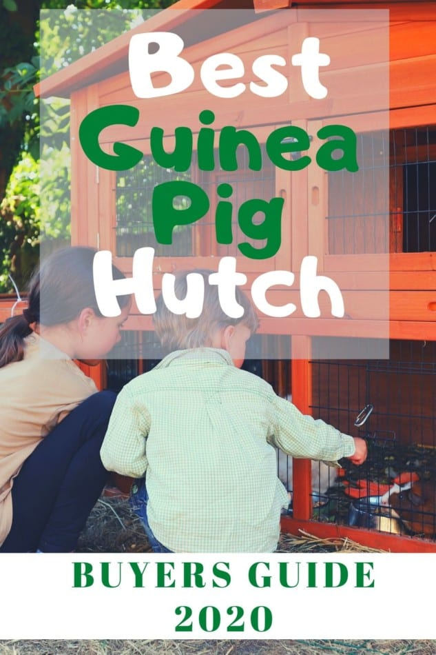 Best Wooden Guinea Pig Hutch 2020 | Top 7 Reviewed 1