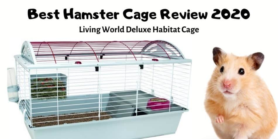Best Hamster Cage | Living World Deluxe Habitat 2020 Review 1