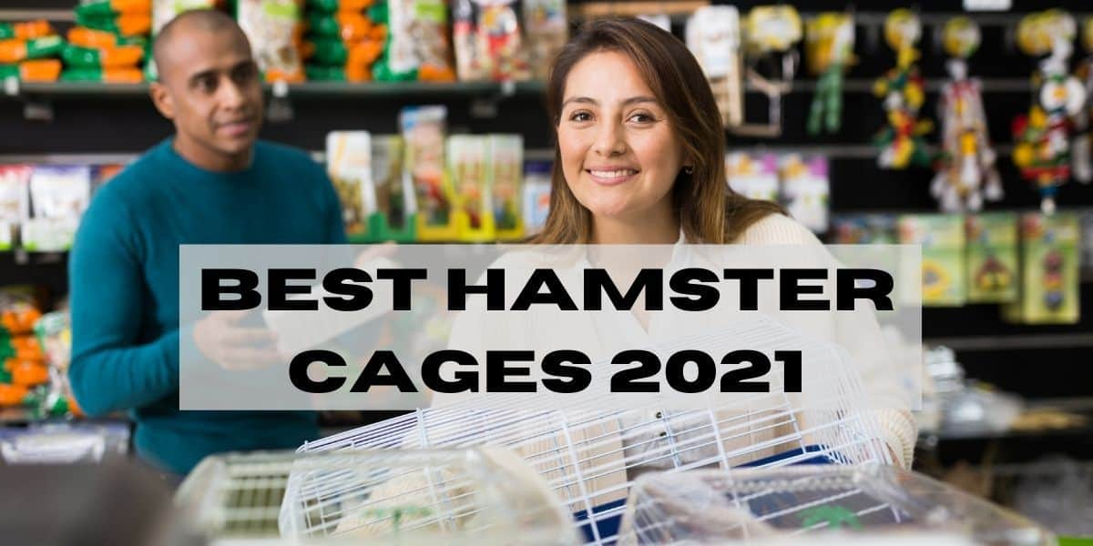 best hamster cage 2021