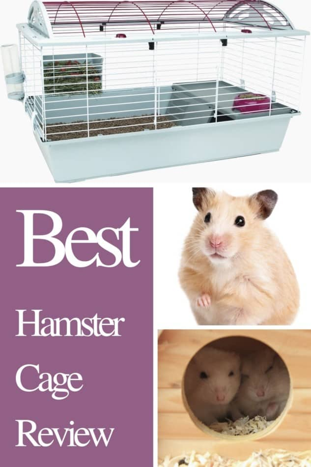 Best Hamster Cage | Living World Deluxe Habitat 2020 Review 2