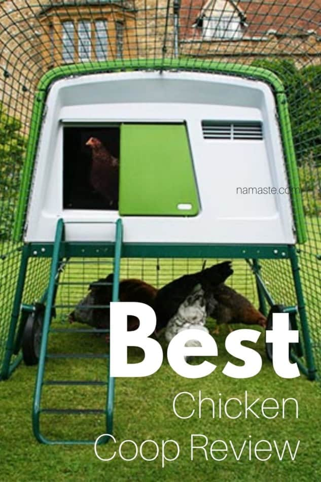 best chicken coop review