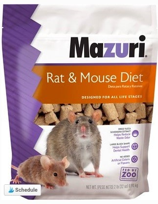 pet mice food