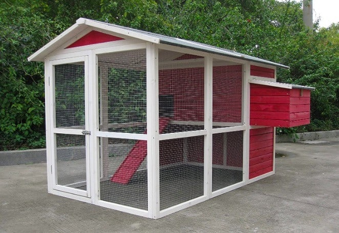 Best Chicken Coop Review - Top 5 chicken coops 2020 5
