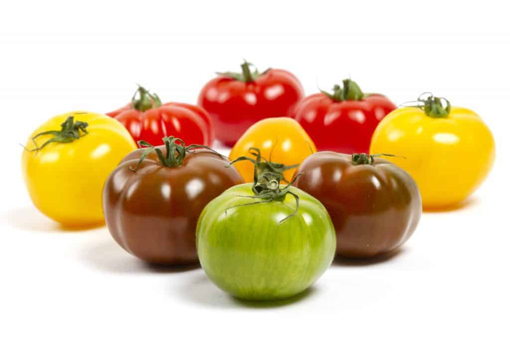 different color tomatoes