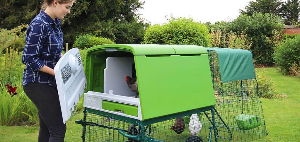 The large Eglu coop has good ventilation and holds the heat well in winter