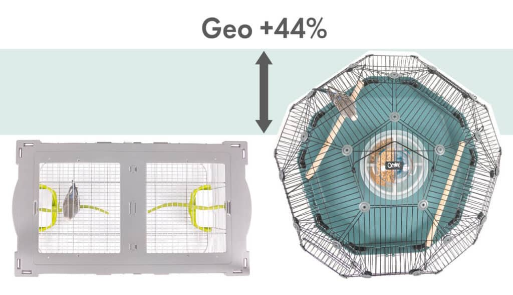 Dome Birdcage | Geo Birdcage Review From Omlet 1