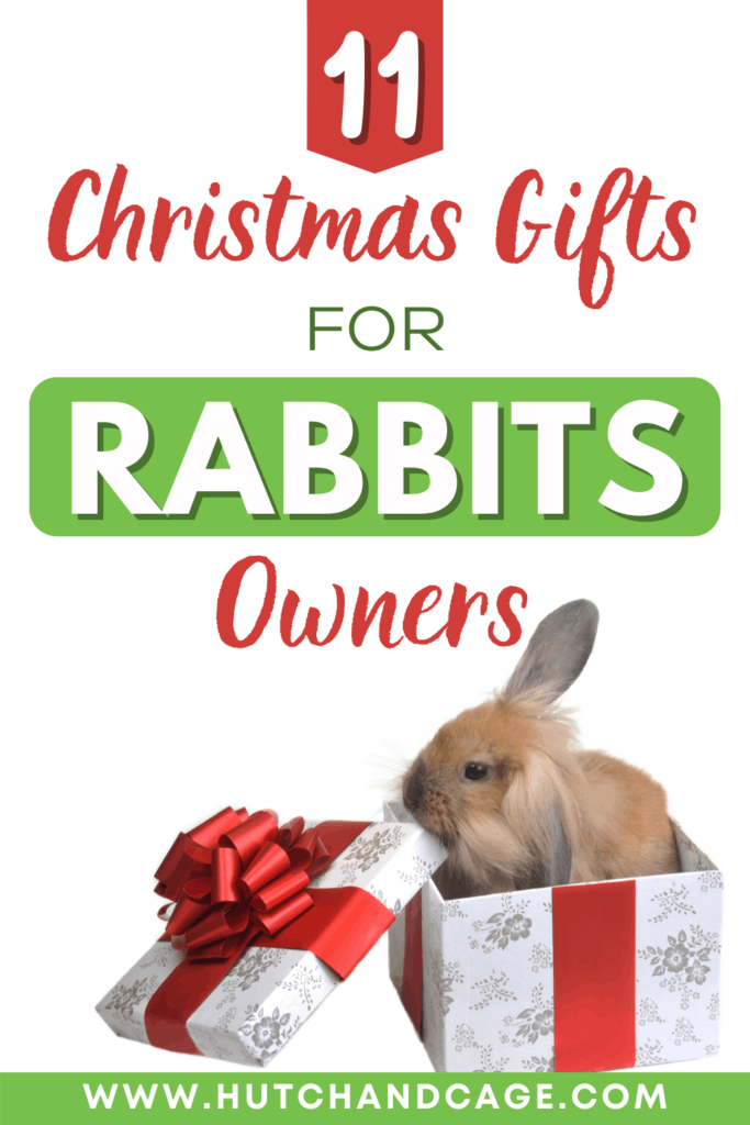 Christmas Gifts for Rabbit Lovers