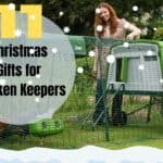christmas gift ideas for chicken keepers
