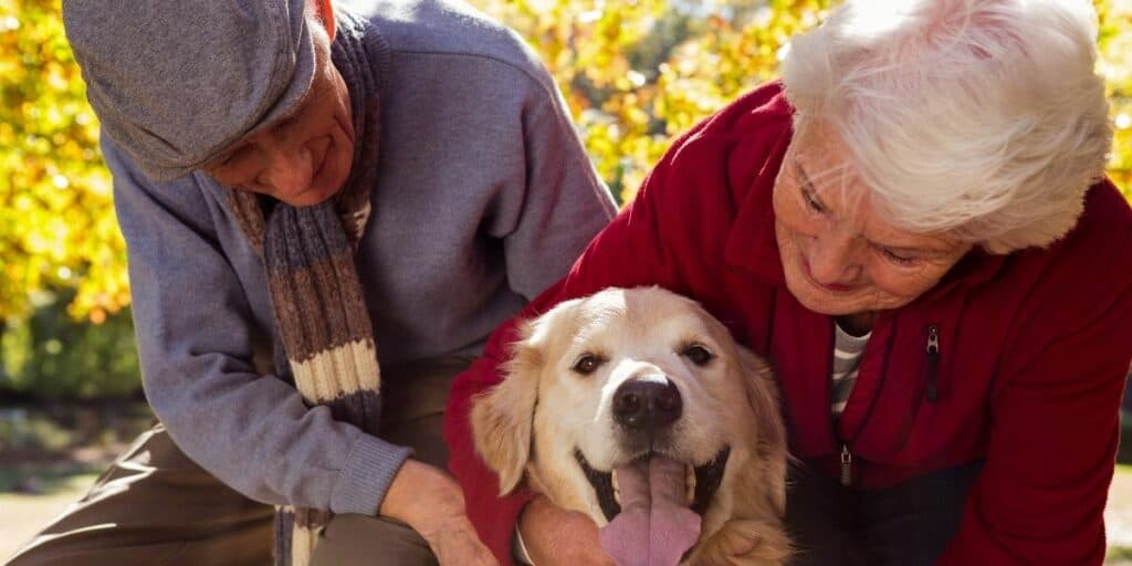 elderly people with a pet dog